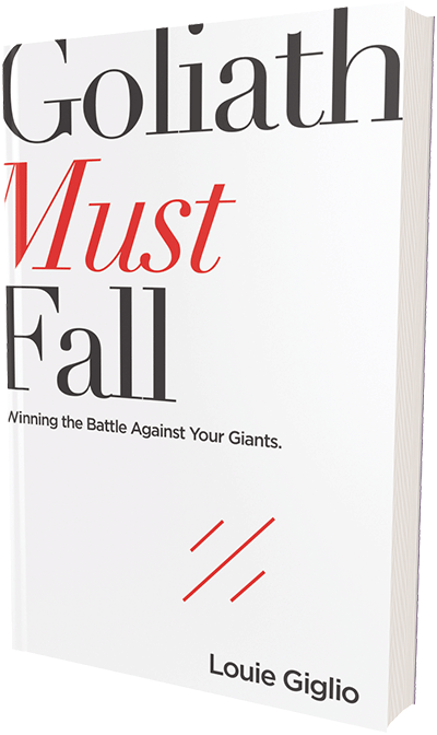 Goliath Must Fall Book