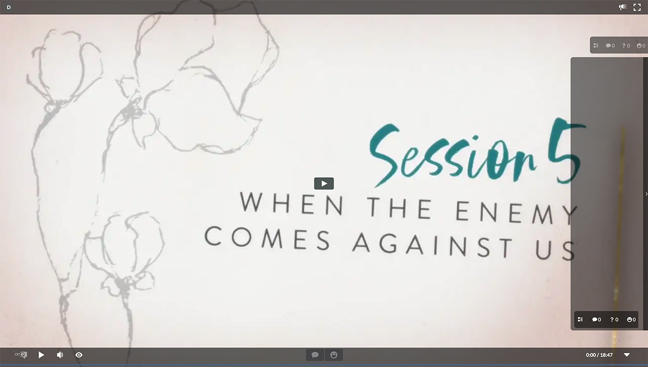 Session 5 - When the Enemy Comes Against Us